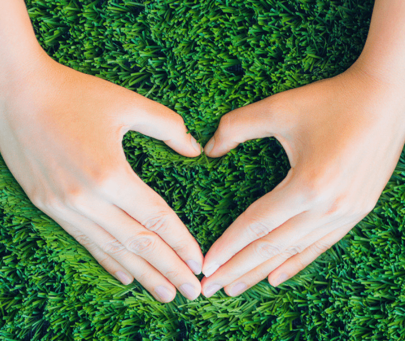Make sure your're watering your lawn to give it the love it needs.