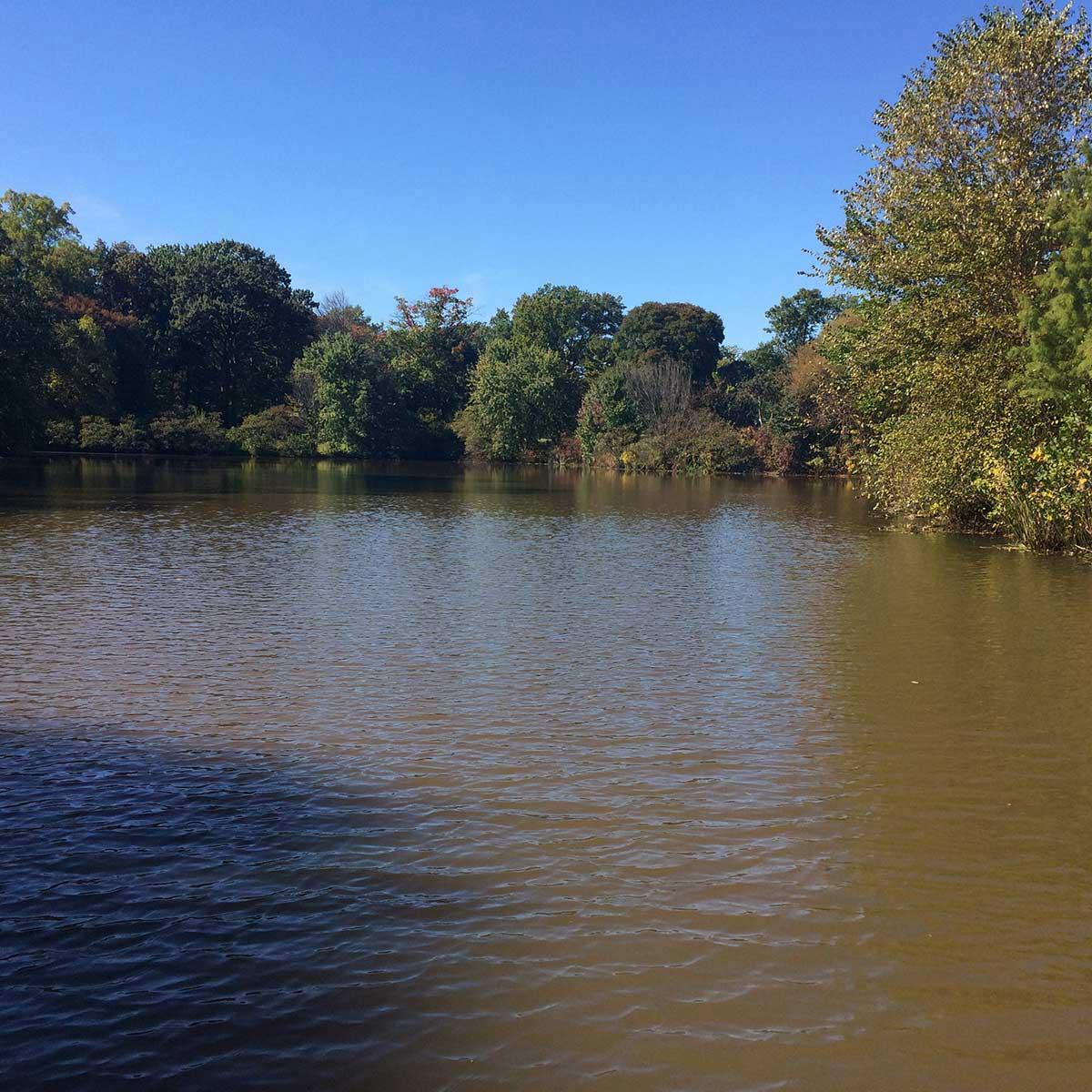 Enjoy the water at Strawbridge Lake Park near Moorestown, NJ.